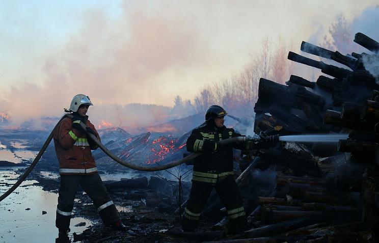 Крупный пожар на лесозаготовках в Карелии ликвидировали