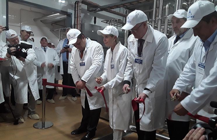 В Новгородской области открыли первую в России линию производства исландского скира