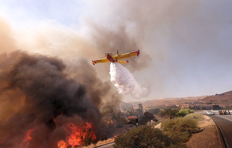 Число жертв пожаров в Калифорнии возросло до 79