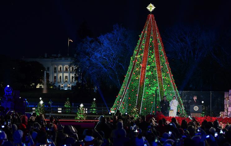 Трамп зажег огни на главной рождественской елке США у Белого дома