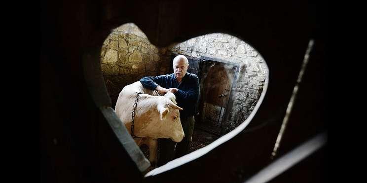 Маленькая Франция. Как влипецкой деревне появился настоящий сырный рыцарь