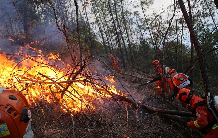 Пожар на границе с Китаем уничтожил 87 домов, 263 человека остались без жилья