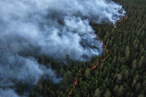 В Забайкальском крае природные пожары уничтожили полторы сотни домов