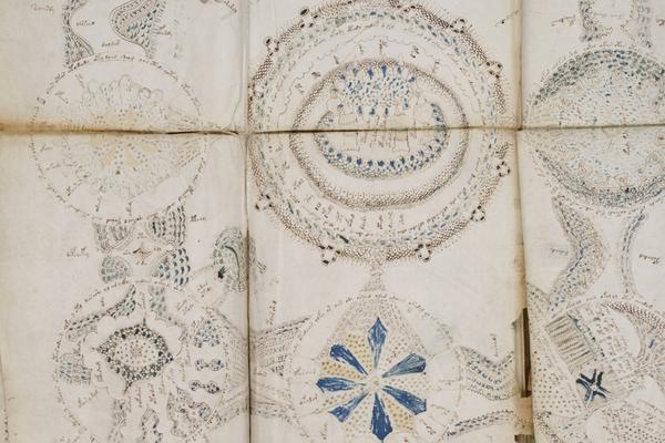 Расшифрована загадочная рукопись Войнича