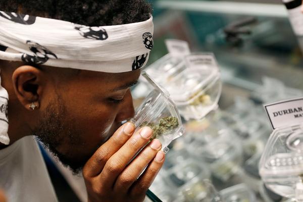 В американском штате обяжут брать на работу любителей марихуаны