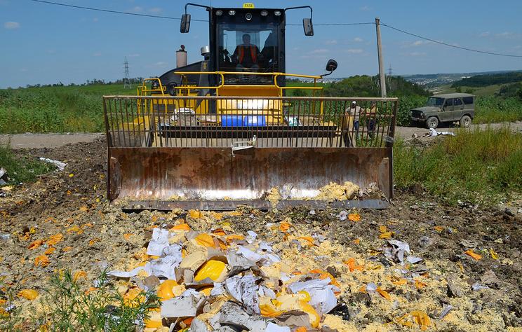 СПЧ просит правительство запретить уничтожение пригодных для еды продуктов