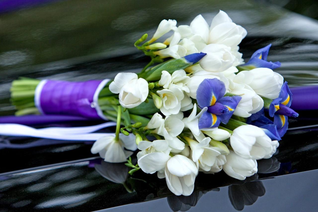 Наша доставка цветов от Lotos-fl.ru предлагает букеты из ирисов и тюльпанов