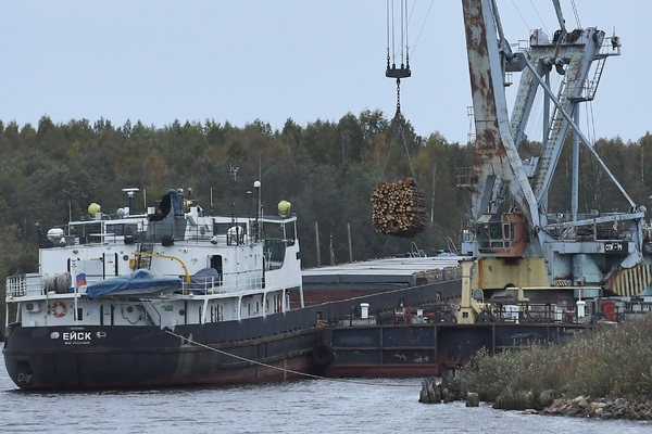 Высоковольтный провод убил всю рыбу в российской реке