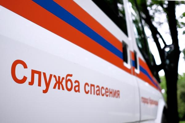 Четверо россиян насмерть отравились газом от гнилого картофеля