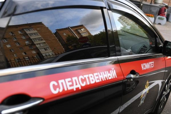 17-летняя россиянка утопила мешавшую ей учить уроки сестру