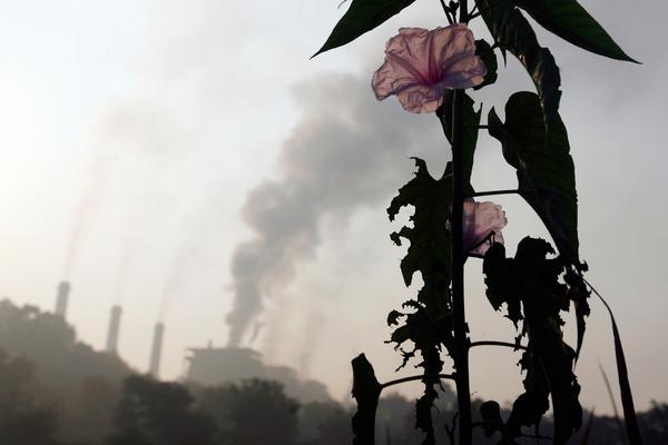Спасение планеты от глобальной катастрофы провалилось