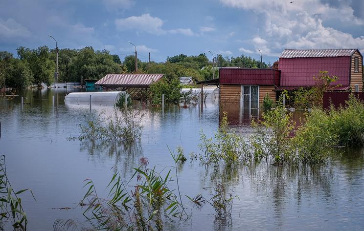 В Еврейской АО начали выплаты пострадавшим от паводка фермерам