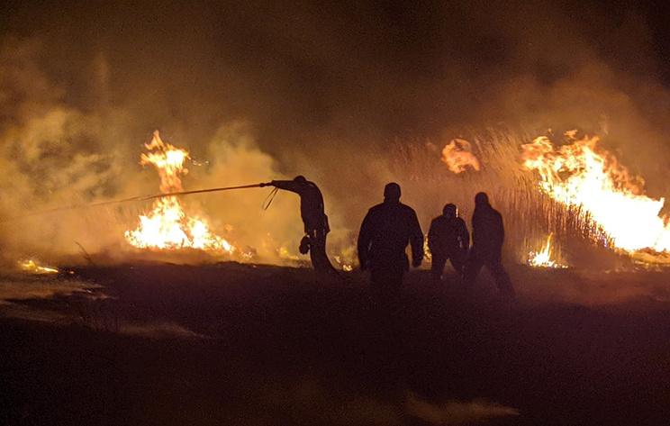 В Хакасии потушили пал травы, из-за которого пострадал один человек