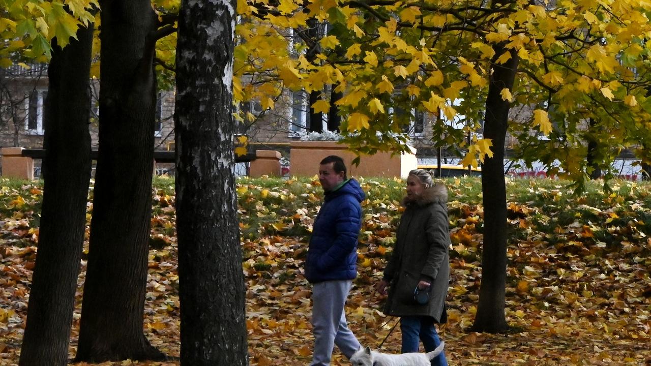 Россиянам пообещали аномально теплый конец октября