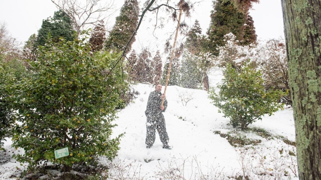 Раскрыта причина аномальных холодов в России