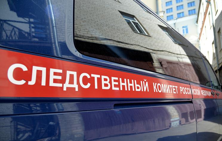 СК в Новосибирске возбудил дела на двух авиадебоширов, напавших на сотрудников полиции