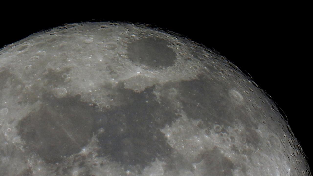 НАСА приостановило контракт со Space X по лунному модулю