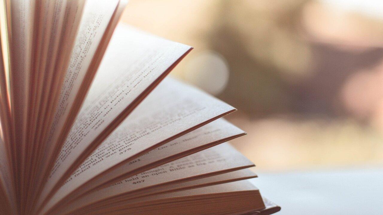 Названы самые популярные книги российских авторов