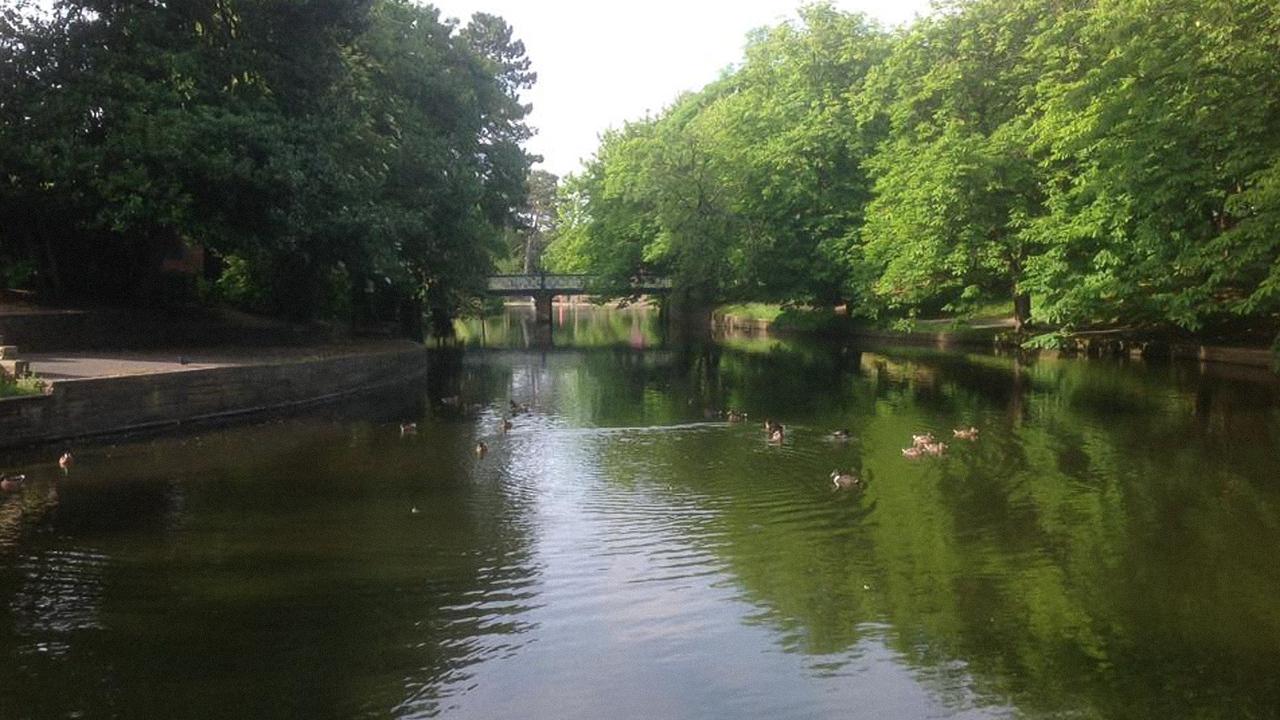 Мужчина упал в озеро в ботаническом саду и умер от редкой инфекции